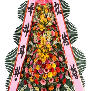 축하화환(신상)