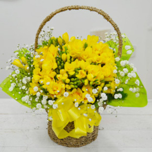 후리지아바구니1(봄예약)